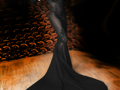 This is an original gown designed by Lauren of Castle Corsetry for Adrianne Curry of America's Next Top Model.