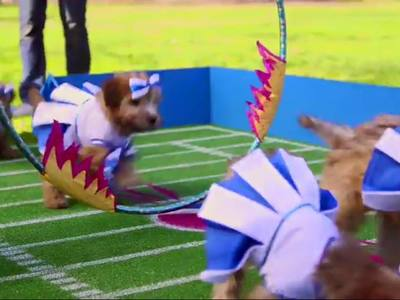 "We created these puppy costumes amoung a number of animal costumes for Pepsi's ""Cutest Halftime Show Ever."""