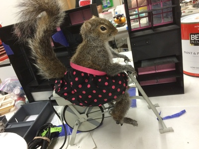 This is a full-sized, animatronic squirrel puppet exercising on a miniature bike that we created for the Farmer's Insurance Hall of Claims commercials and website.